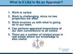 what is it like to be an appraiser