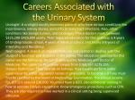 careers associated with the urinary syste m
