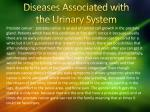 diseases associated with the urinary system