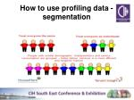 how to use profiling data segmentation