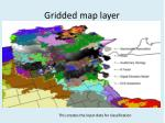 gridded map layer