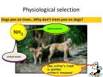 physiological selection1
