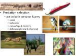 predation selection