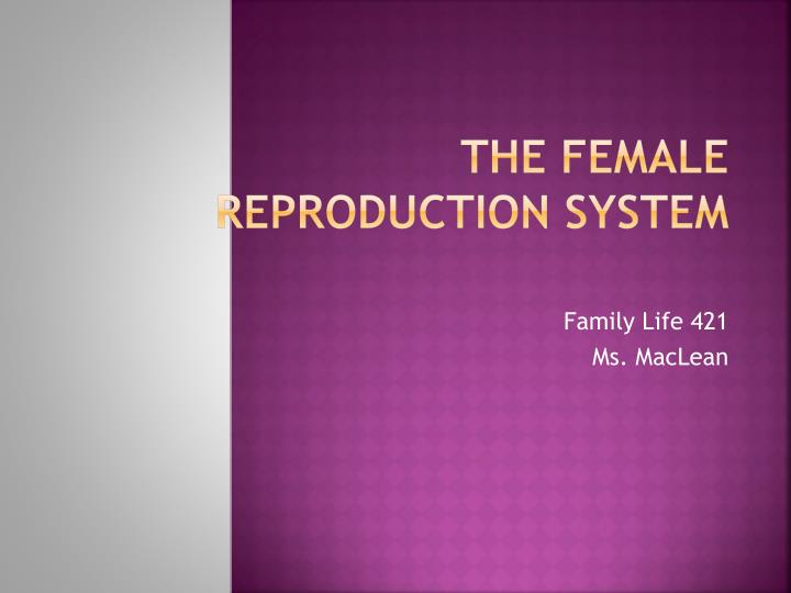 the female reproduction system n.