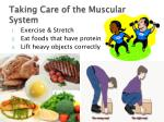 taking care of the muscular system