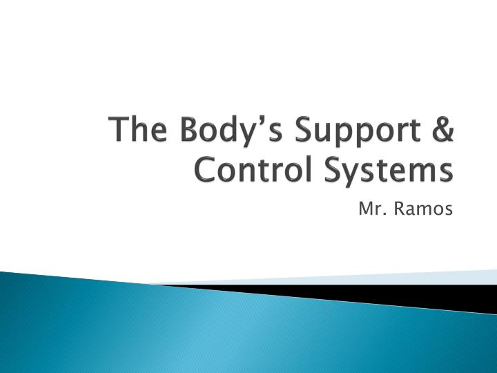 the body s support control systems n.