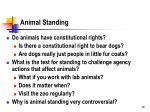 animal standing