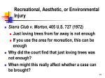 recreational aesthetic or environmental injury