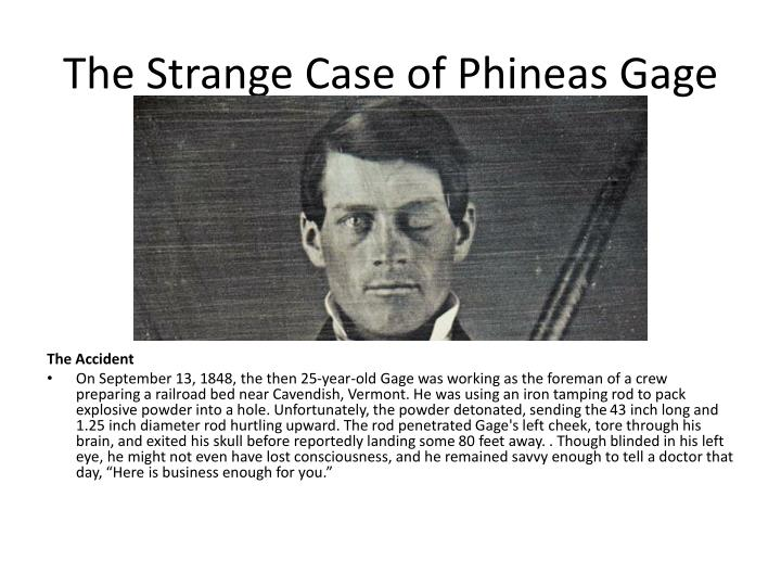 phineas gage paper Phineas gage prepare a 2 (2 pages for the body or main content, not including title and references) page paper in which you explain the role of the brain in.