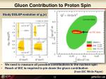 gluon contribution to proton spin