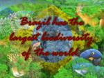 brazil has the largest biodiversity of the world