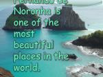 fernando de noronha is one of the most beautiful places in the world