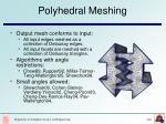 polyhedral meshing
