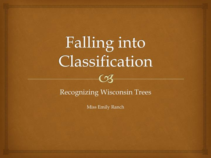 falling into classification n.