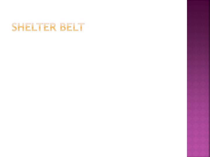Shelter belt