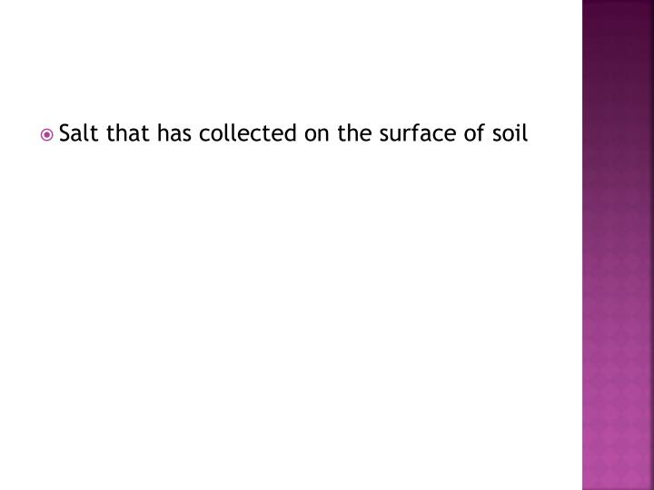 Salt that has collected on the surface of soil