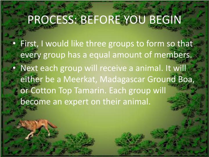Process before you begin