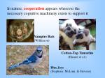 in nature cooperation appears wherever the necessary cognitive machinery exists to support it