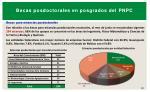 becas posdoctorales en posgrados del pnpc