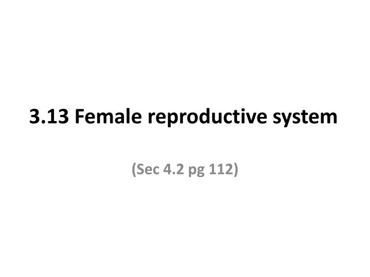 3 13 female reproductive system n.