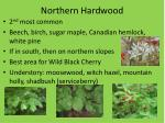northern hardwood