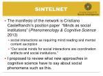 sintelnet1