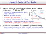 energetic particle 5 year goals