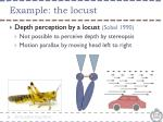 example the locust
