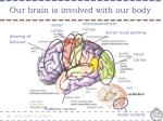 our brain is involved with our body
