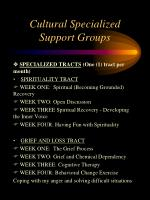 cultural specialized support groups