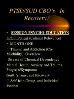 ptsd sud cbo s in recovery