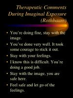 therapeutic comments during imaginal exposure rothbaum