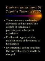 treatment implications of cognitive theory of ptsd