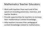 mathematics teacher educators