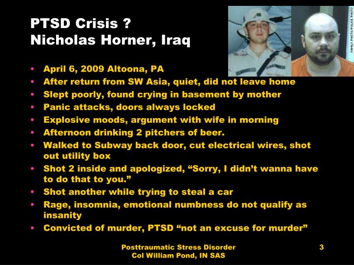 Ptsd crisis nicholas horner iraq