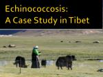 echinococcosis a case study in tibet
