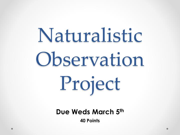 naturalistic observation project n.