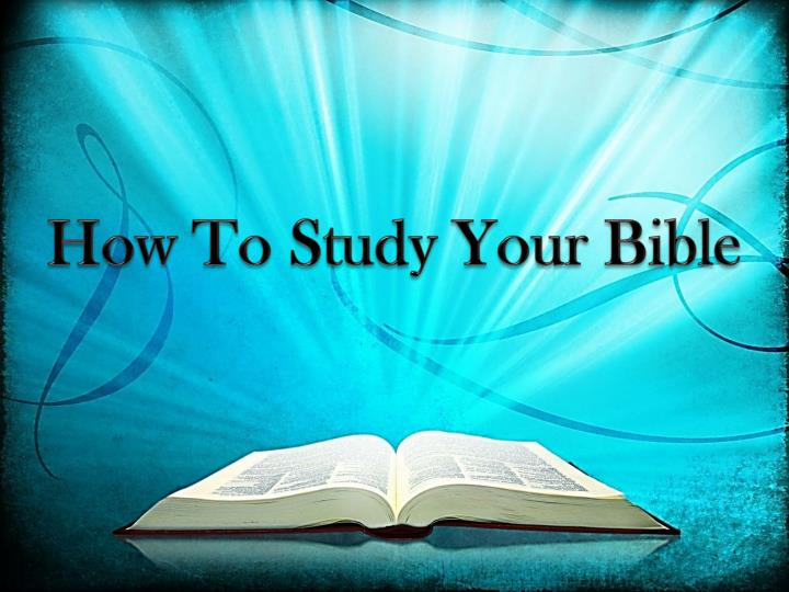 how to study your bible n.