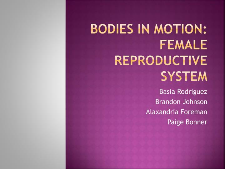 bodies in motion female reproductive system n.