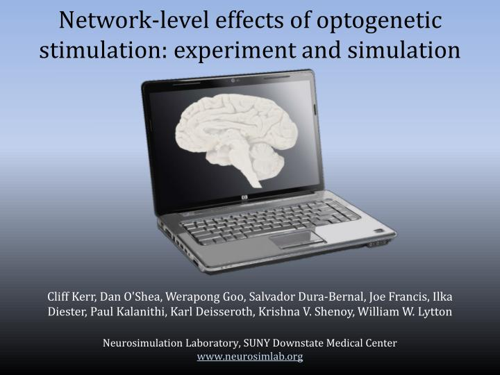 network level e ffects of optogenetic s timulation experiment and simulation n.