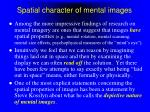 spatial character of mental images