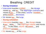 breathing credit