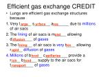 efficient gas exchange credit