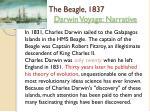 the beagle 1837 darwin voyage narrative