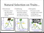 natural selection on traits