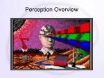 perception overview