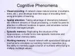 cognitive phenomena