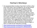 harlow s monkeys