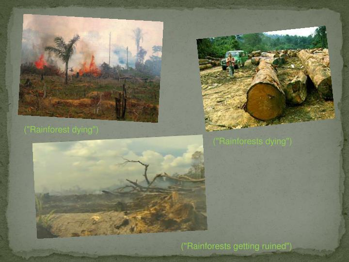 "(""Rainforest dying"")"