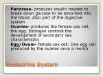 endocrine system3